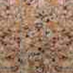 Kona Beige Click For a Quote